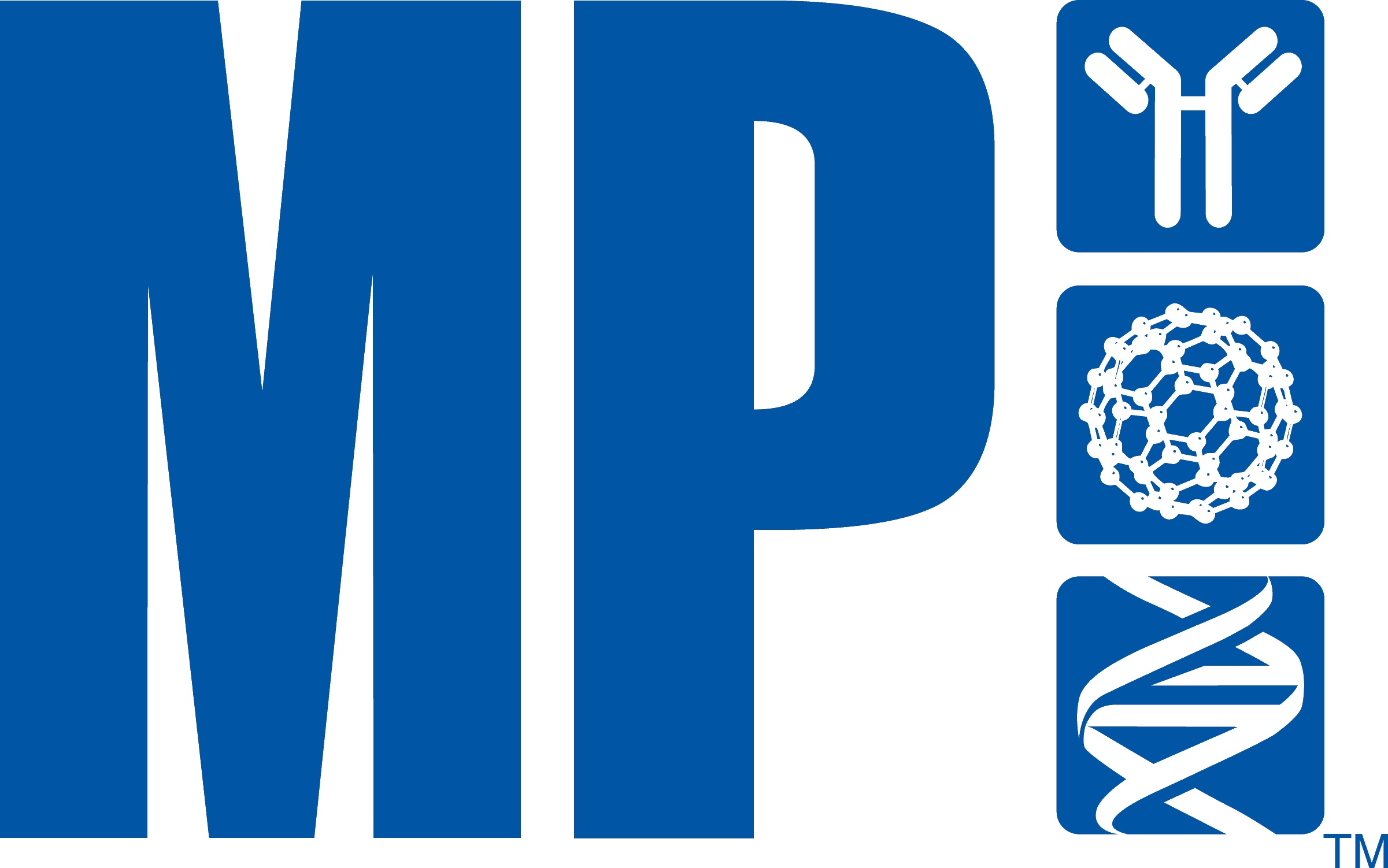logo mp bleu HQ CMJNtrans