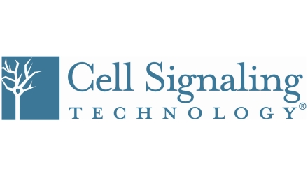 Cell Signaling Technology Europe, B.V.